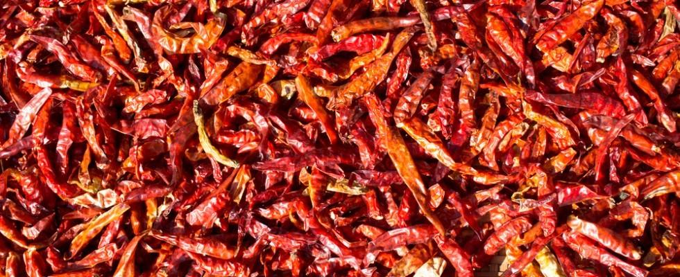 La classifica dei peperoncini più piccanti del mondo