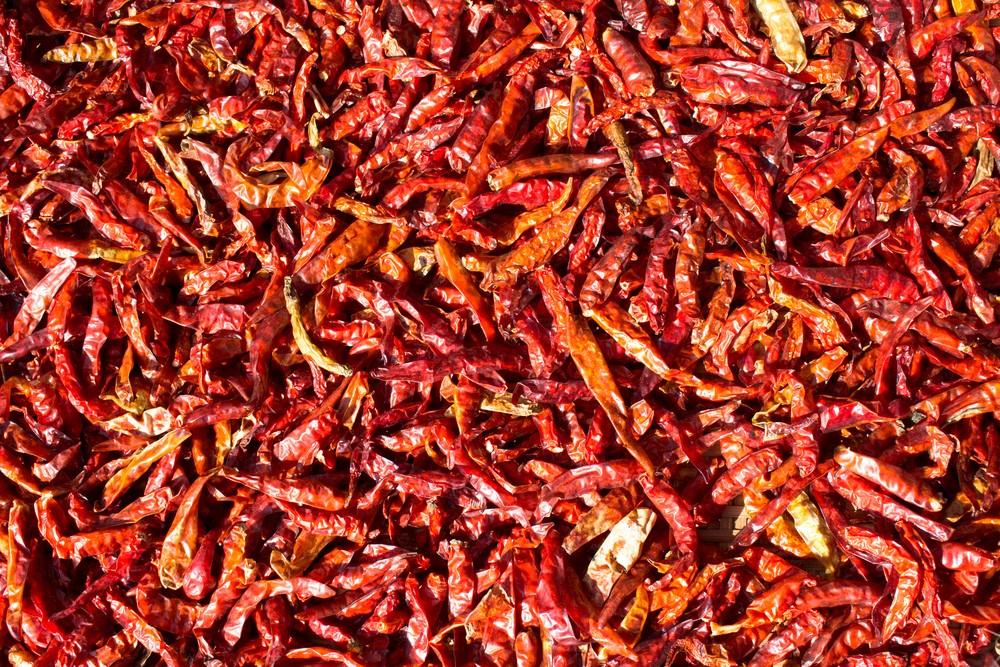 Peperoncini pi piccanti del mondo agrodolce for Pianta peperoncino