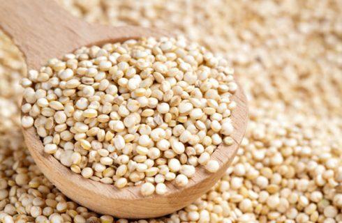 """Expo 2015: la Bolivia e il tema """"Quinoa, un futuro seminato migliaia di anni fa"""""""