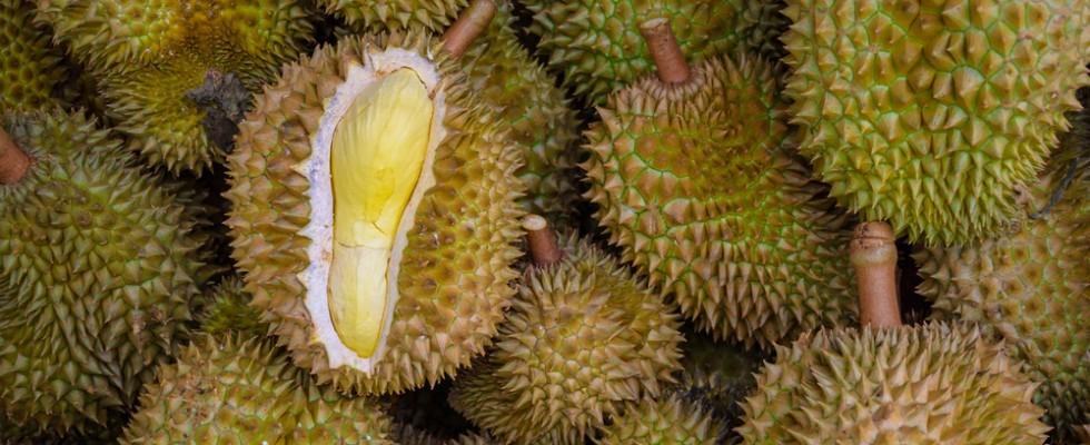 Cos'è il durian?