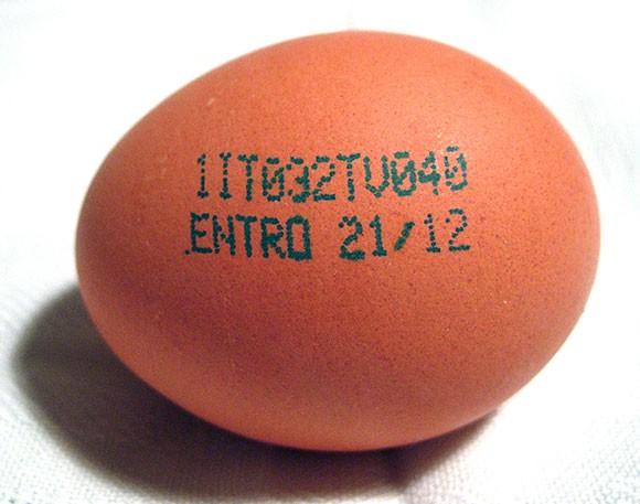 codice uovo