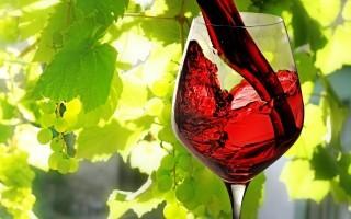 ViniVeri 2015 a Cerea: fiera dei vini naturali