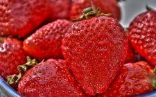 Come usare le fragole in 5 ricette veloci