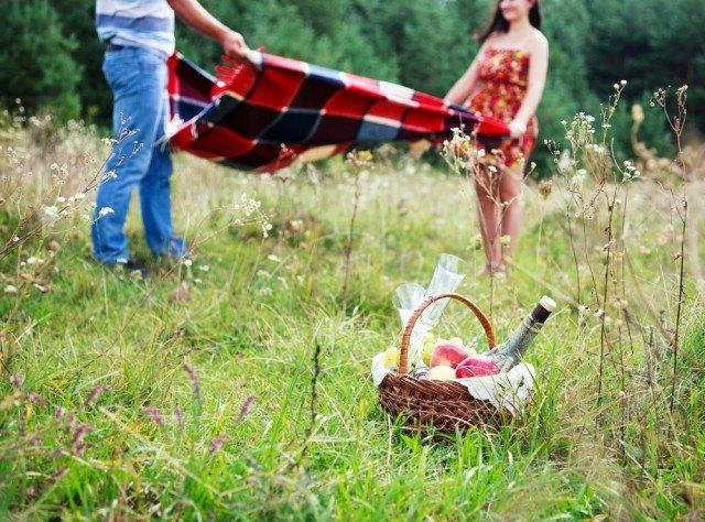 Il kit perfetto per il picnic - Foto 19