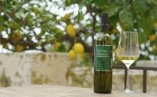 10 vini bianchi che dovreste provare