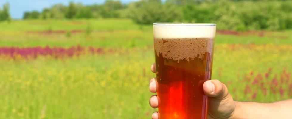 10 birre da bere questa primavera