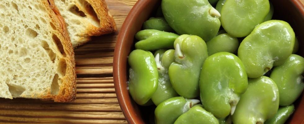 10 ricette con le fave da provare questa primavera
