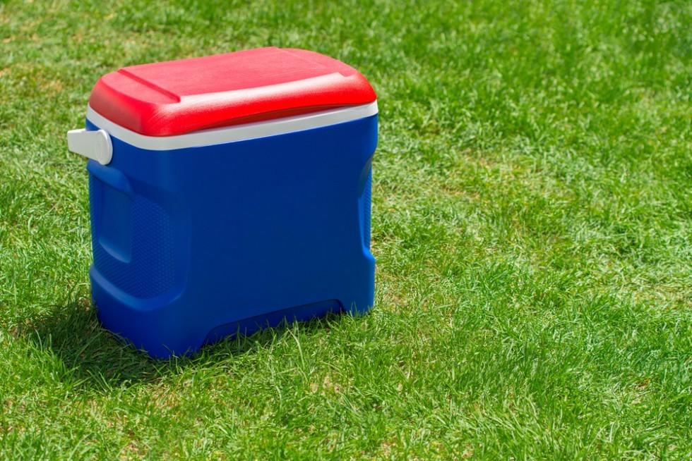 Il kit perfetto per il picnic - Foto 11