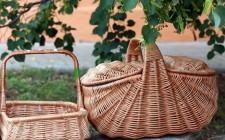 Il kit perfetto per il picnic