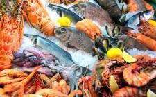 Dove si compra il pesce a Milano?
