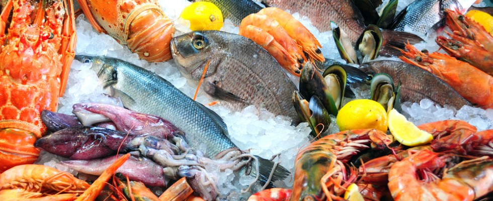 Dove comprare del buon pesce a Milano