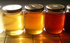 Dolcezza naturale: i tipi di miele