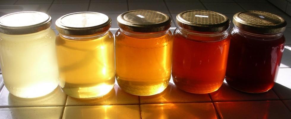 Dolcezza naturale: i principali tipi di miele