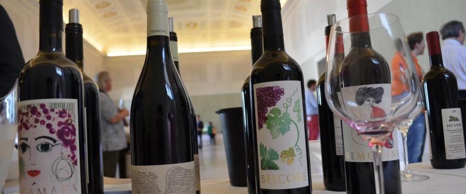 Anteprima Vini della Costa Toscana: i laboratori da non perdere