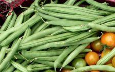 I fagiolini gratinati light perfetti per la dieta