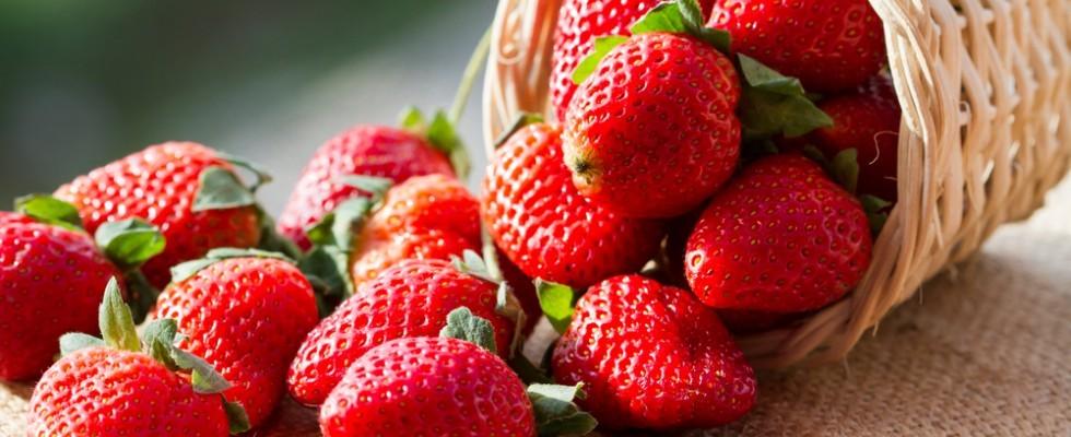 I cibi della longevità della dieta Smart Food