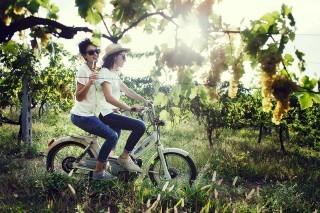 Terroir Marche: le eccellenze enologiche ad Ascoli Piceno