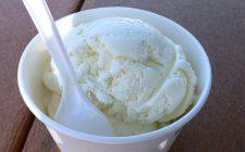 Il gelato allo yogurt greco e miele con la ricetta semplice