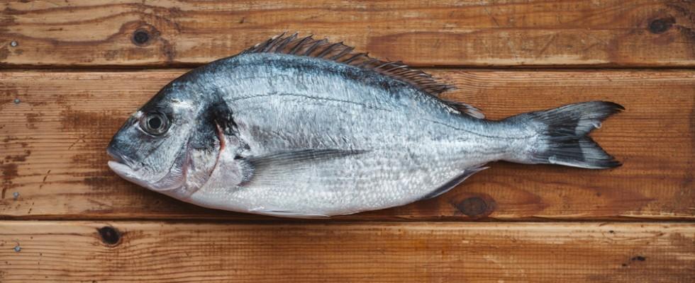How to: breve guida all'acquisto del pesce sostenibile