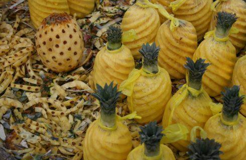 Come sbucciare il mango e l'ananas e tagliarli in maniera creativa