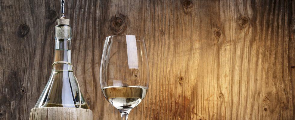 I vini italiani più importanti: il viaggio nelle nostre regioni