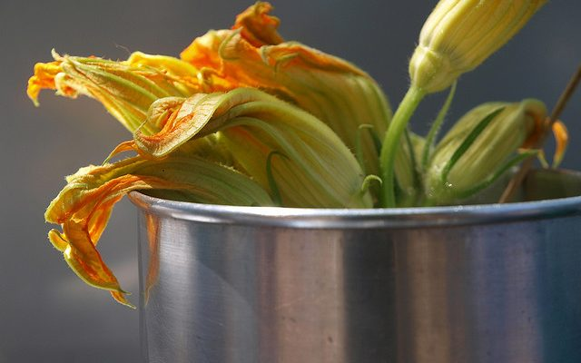 La pasta con fiori di zucca e provola per il pranzo estivo