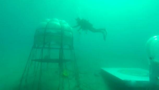 Il basilico ligure per il pesto si coltiva in fondo al mare: è il Nemo's Garden
