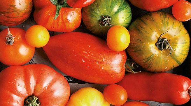 Pomodori antichi e golosi: la guida di Linda Louis per conoscere i vari tipi di pomodori