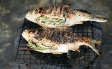 La griglia perfetta: scegliere il pesce