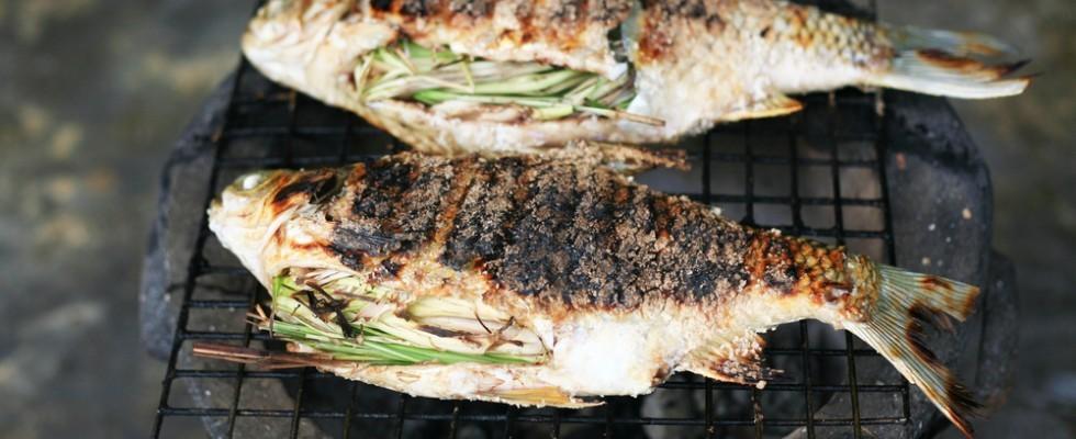 Come scegliere il pesce perfetto per una grigliata