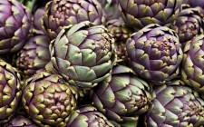 Quali proteine assumono vegani e vegetariani?