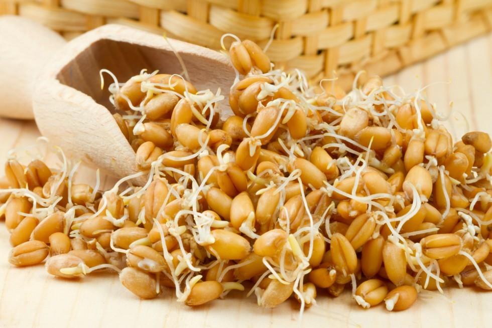 Quali proteine assumono vegani e vegetariani? - Foto 5