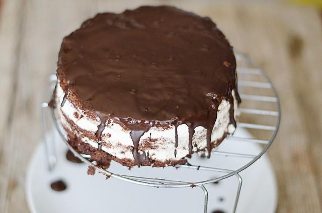 Torta pingui 5