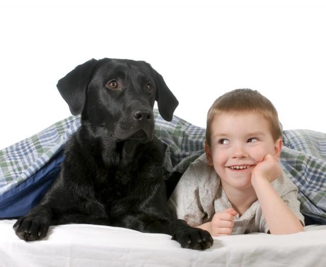 Cani bambini