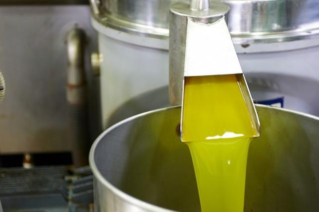 produzione dell'olio
