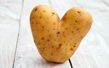 A Bologna per celebrare le patate