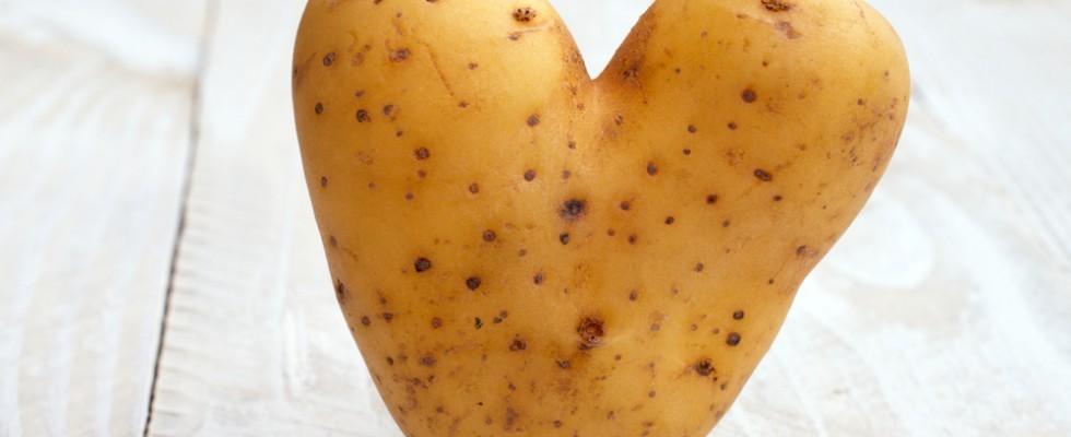 A Bologna per celebrare le patate: Patata in Bo