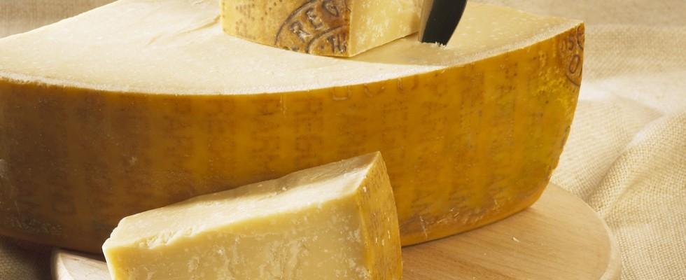 Gustòvago: a Parma tra vino, lievitati e formaggi