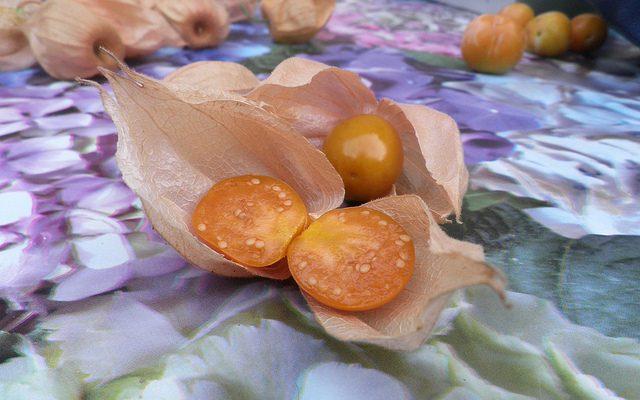 Alchechengi: proprietà e ricette di questo frutto orientale