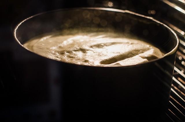 pan di spagna GF-4