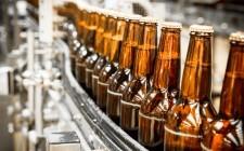 Perché spopolano le birre crafty?