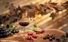 Vino novello: il sapore dell'autunno