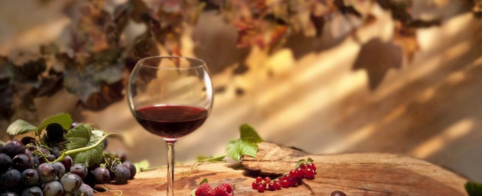 Il vino novello tra i sapori dell'autunno