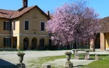 Milano: 5 indirizzi per mangiare in cascina