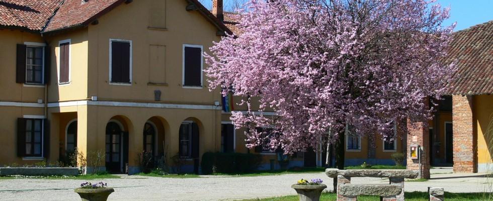 Fuori porta: mangiare nelle cascine vicino Milano