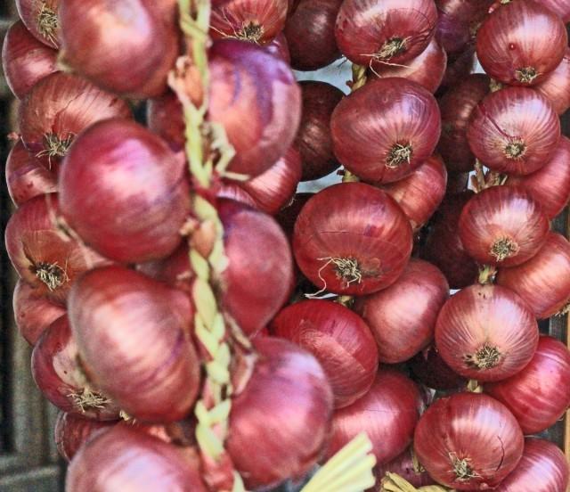 cipolla rossa di cavasso
