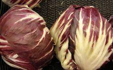 Lo sformato di radicchio rosso e gorgonzola con la ricetta semplice