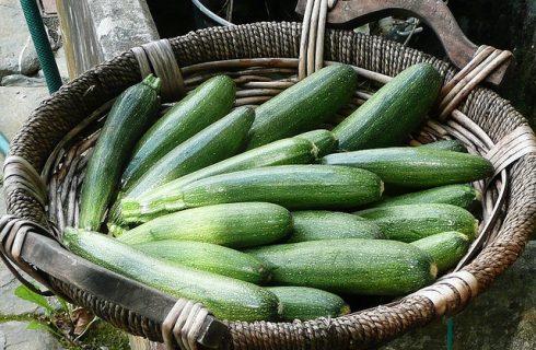 Zucchine in padella: la ricetta veloce e light