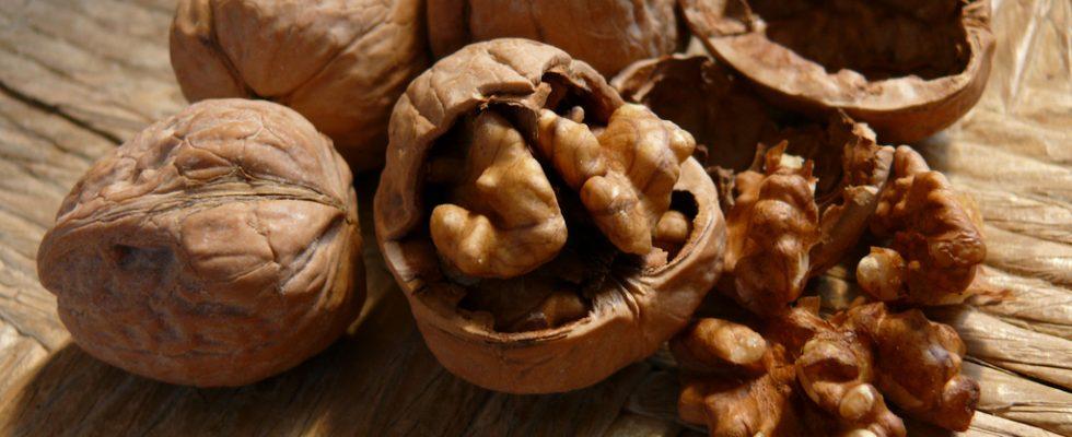 Frutta secca e bambini: quando possono mangiarla?