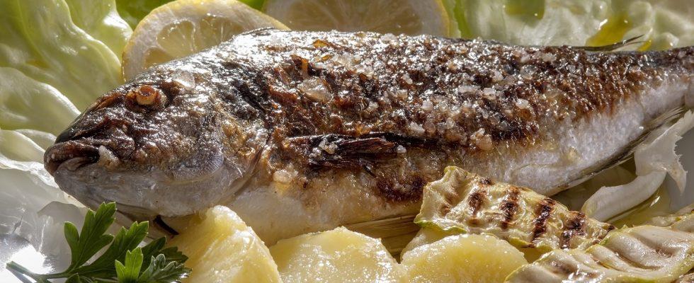 Le ricette di Natale per la Vigilia con la cena a base di pesce